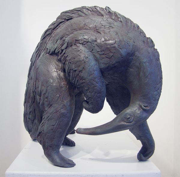 'Anteater' by Lucy Kinsella